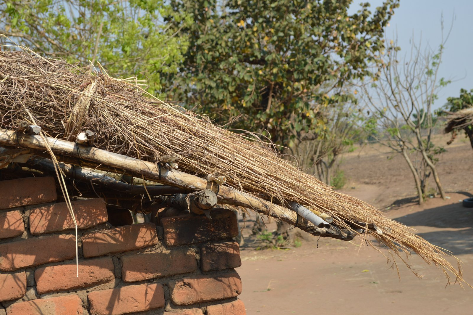 Malawi Vernacular Architecture (13)